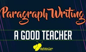 A Good Teacher Paragraph Writing