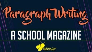 Photo of A School Magazine Paragraph Writing