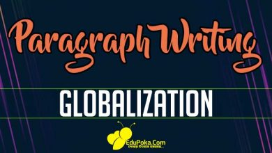 Photo of Globalization Paragraph Writing
